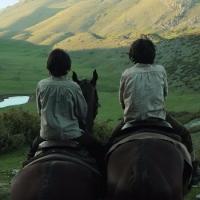 Cavalli | Recensione