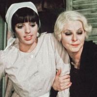 Nina | Vincente Minnelli (1976)