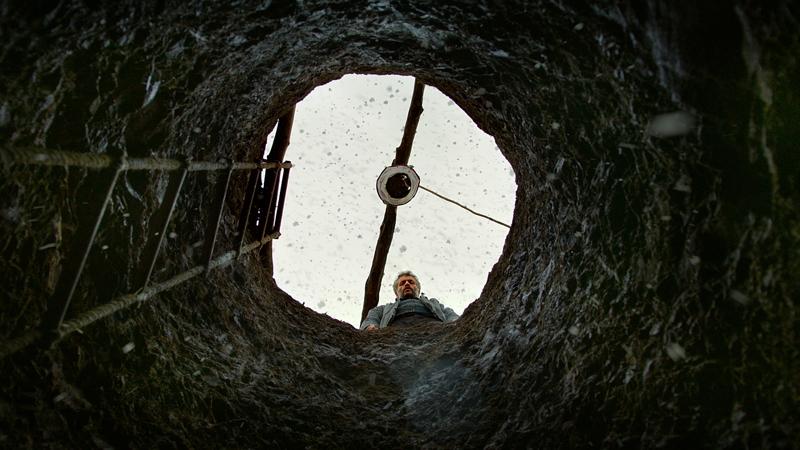 Risultati immagini per the wild pear tree