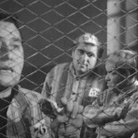 Ladro lui, ladra lei | Luigi Zampa (1958)