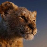 Recensione: Il re leone